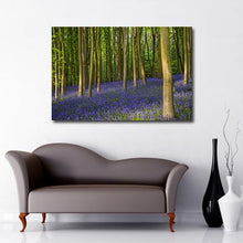 Bluebell Woods forest canvas