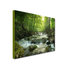 Woodland Stream beck river art canvas