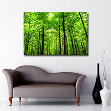 Load image into Gallery viewer, green forest Art Canvas