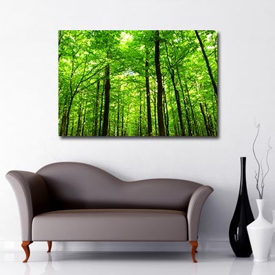 green forest Art Canvas