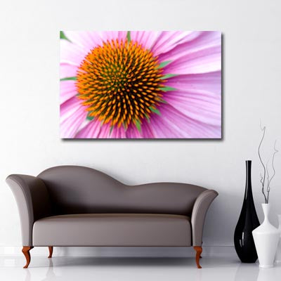 Landscape Art Canvas. Closeup of pink Gerbera flower