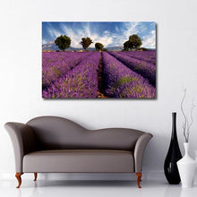 Landscape Art Canvas of Lavender fields with trees in background and cloudy, blue skies
