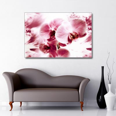 Landscape Art Canvas of close up pink orchid flowers