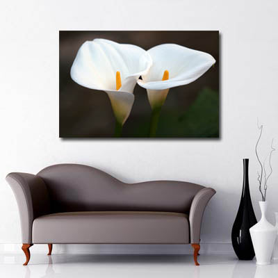 Landscape Art Canvas of close up white calla lily flowers