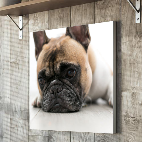 Square photo upload canvas gift