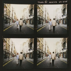 Morning Glory Contact Sheet (4 frame) - Michael Spencer Jones