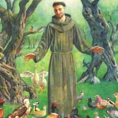 Francis of Assisi 2025 Attunement