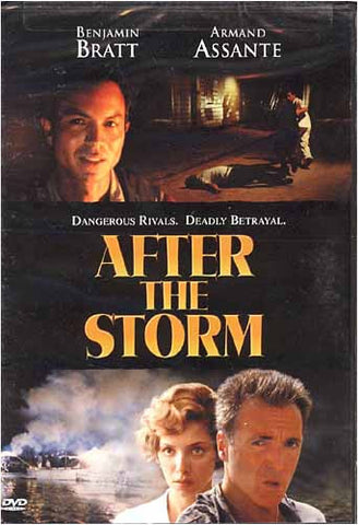 After The Storm DVD Movie