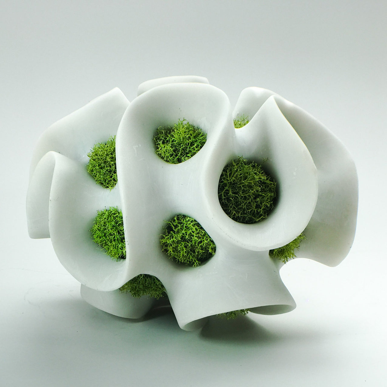 Kelp Sculpture with Decorative Moss - Large (White OR Black)