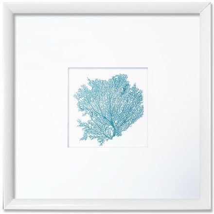 "26 x 26"" Classic Small Sea Fan with Double Mat - WJC Design"