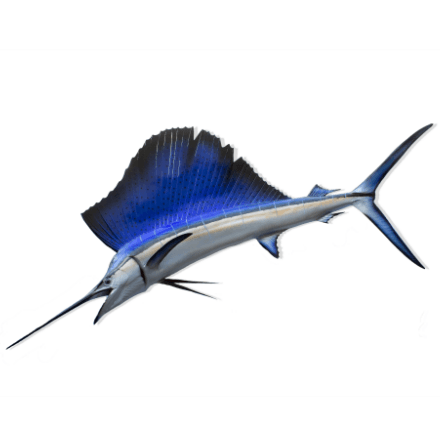 Giant Blue Sailfish - WJC Design