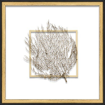 Gold Exotic Sea Fan - WJC Design