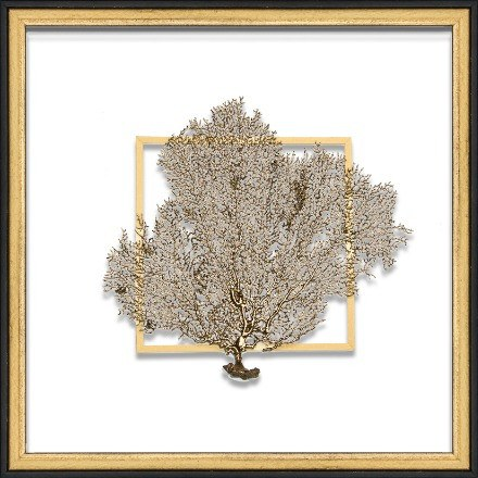 Gold Sea Fan - WJC Design