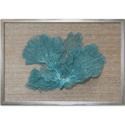 Teal Sea Fan on Brown - WJC Design