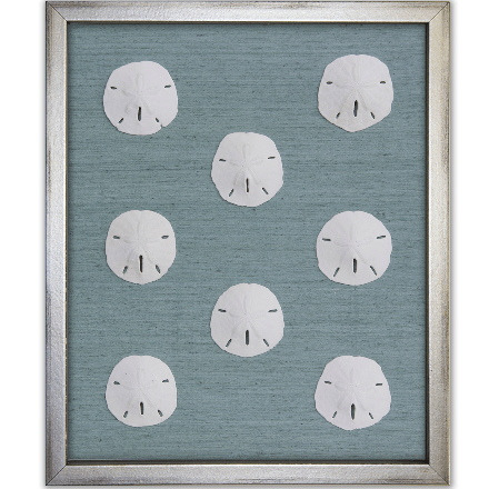 Sand Dollars on Blue - WJC Design