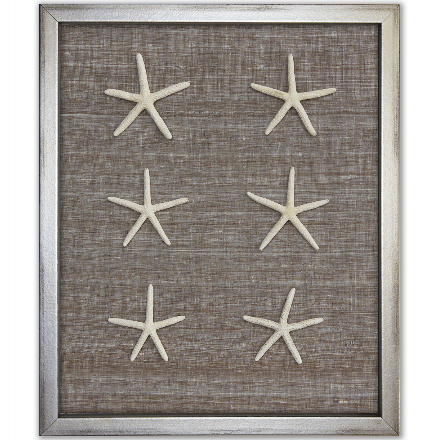 Skinny Starfish on Brown Silk - WJC Design