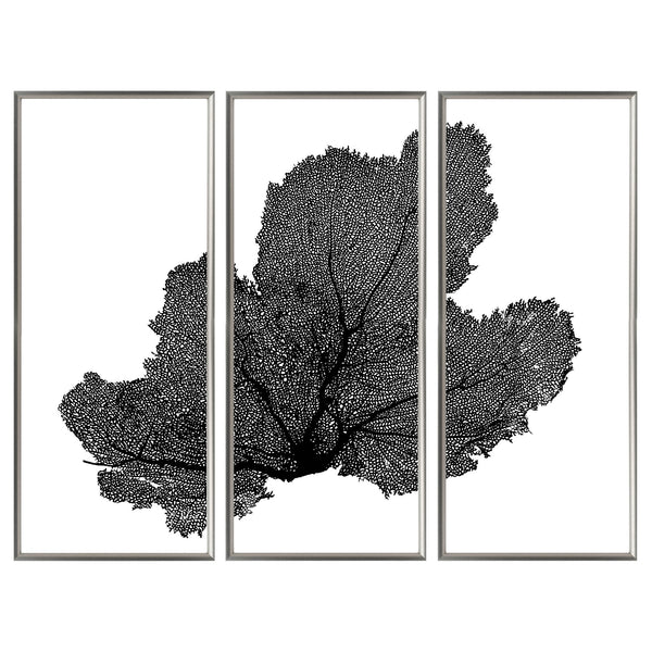 Sea Fan Triptych - WJC Design