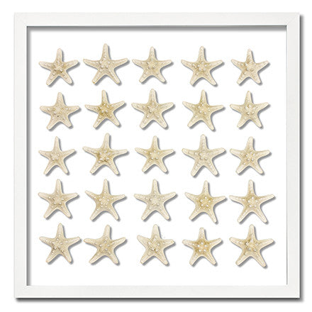 25 Knobby Starfish - WJC Design