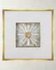 Selenite - WJC Design