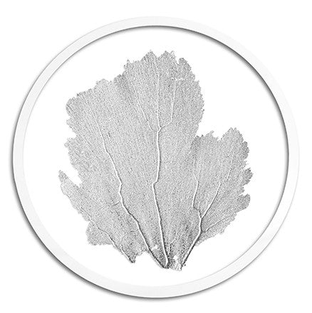 Classic Sea Fan in Round Frame - WJC Design