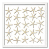 25 Skinny Starfish - WJC Design
