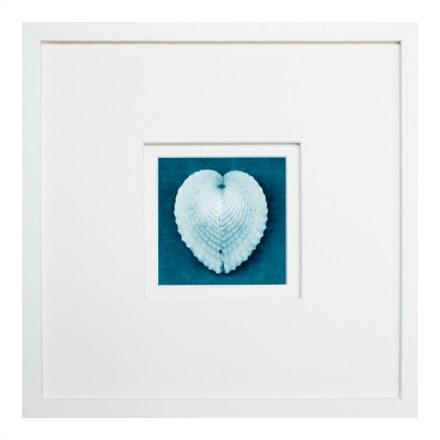 Blue Sea Life Prints - WJC Design