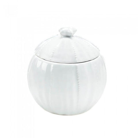 Accent Plus Pure Ceramic Container - livezippy
