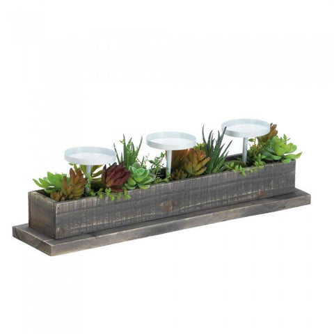 Accent Plus 10017835 Reclaimed Wood Succulent Candle Display