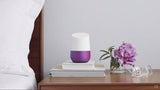 Google Home Smart Speaker W/ Setup & Integration