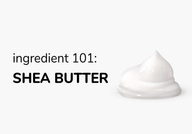 Ingredient 101: Shea Butter