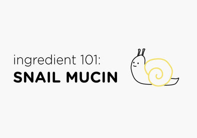 Ingredient 101: Snail Mucin