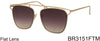 BR3151FTM - Wholesale Bridgeless Brow Line Sunglasses in Gold