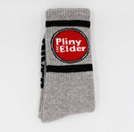 Pliny the Elder Socks