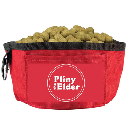 Pliny the Elder Dog Bowl