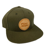 Pliny the Elder Wood Logo Snapback Hat