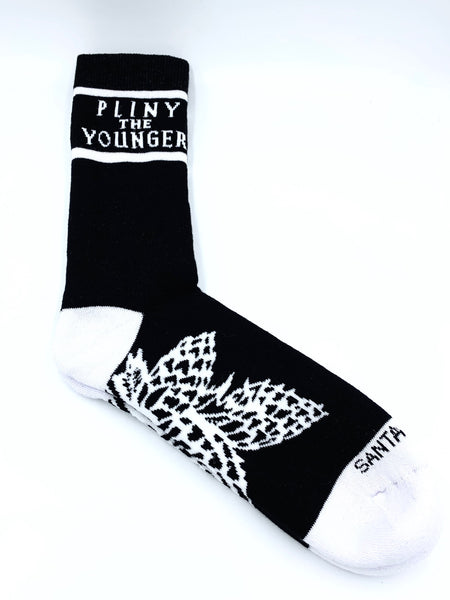 Pliny the Younger Socks
