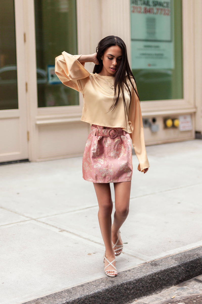 Marie Antoinette Embroidered Mini Skirt