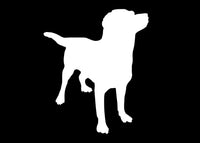 Labrador Dog Pet Animal Decal Sticker Graphic - The Decal God