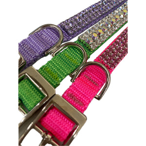 Custom dog collars, custom cat collars, personalized collars.
