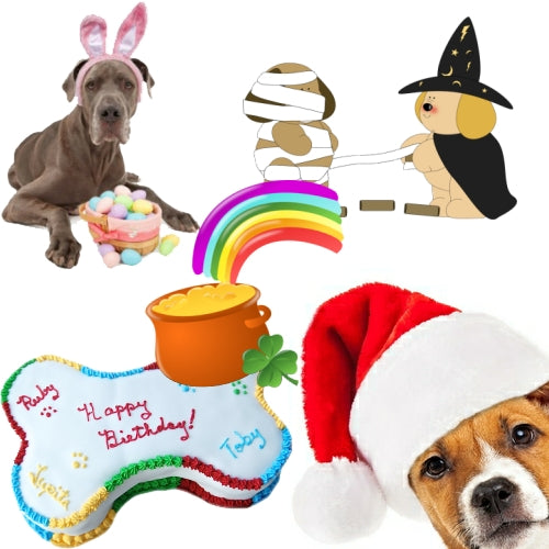 Pet holiday products, dog birthday cakes and treats.