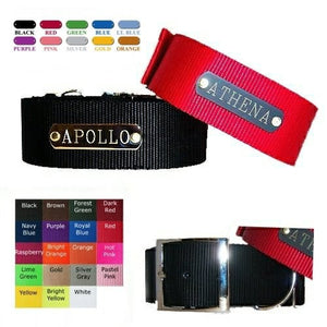 A 1 1/2 inch wide personalized dog collar with metal plate for medium to large dogs.