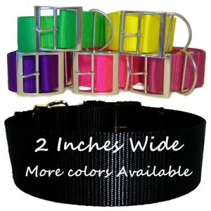 2 Inch Wide Big Dog Collar - dog-collar-fancy