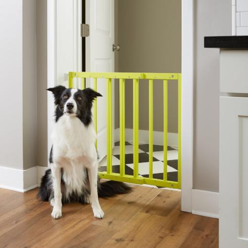Safety Mate Expandable Pet Gate - For Dogs - dog-collar-fancy