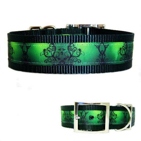 A gradient green scrolls printed dog collar for large dogs.