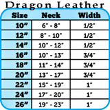 2 row Dragon Pet Collar in blue sizing chart