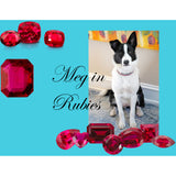 The Ruby Queen dog collar model