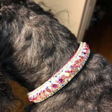 Ultimate Beauty crystal dog collar model