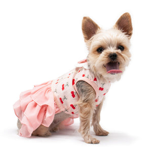 pink dog dress with cherry print