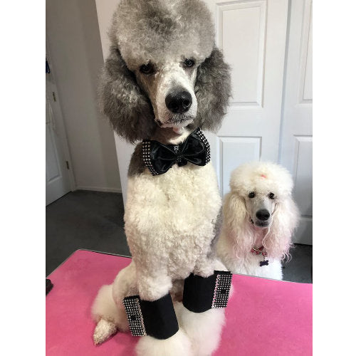 Formal dog bow tie and leg cuffs in satin - model dog