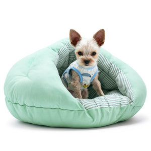 Mint green dog bed with pinstripe interior for spring and summer
